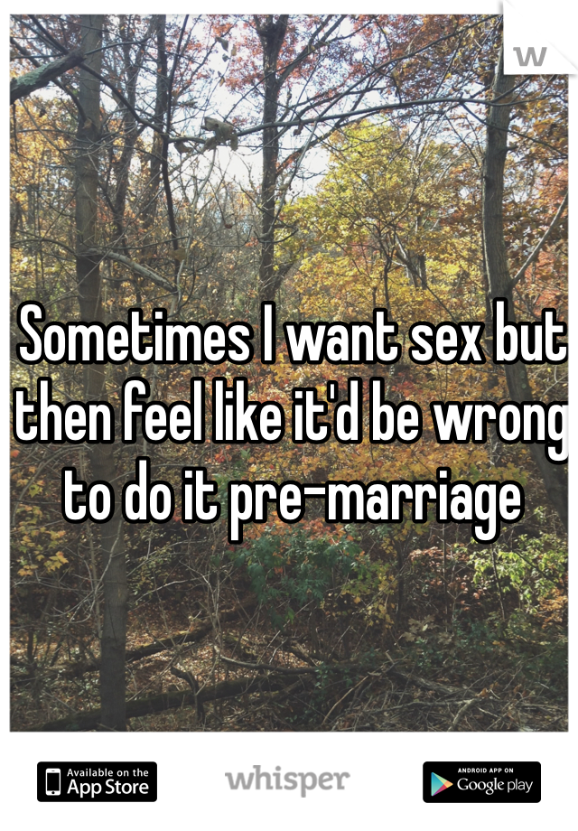 Sometimes I want sex but then feel like it'd be wrong to do it pre-marriage
