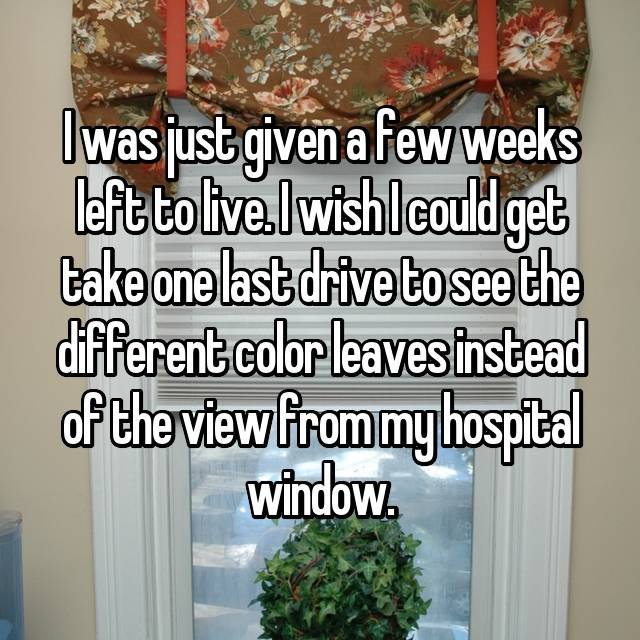 I was just given a few weeks left to live. I wish I could get take one last drive to see the different color leaves instead of the view from my hospital window.