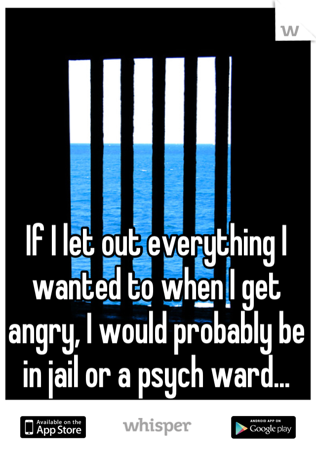If I let out everything I wanted to when I get angry, I would probably be in jail or a psych ward...