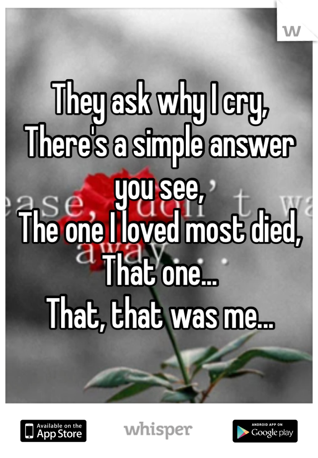 They ask why I cry,  There's a simple answer you see,  The one I loved most died,  That one...  That, that was me...