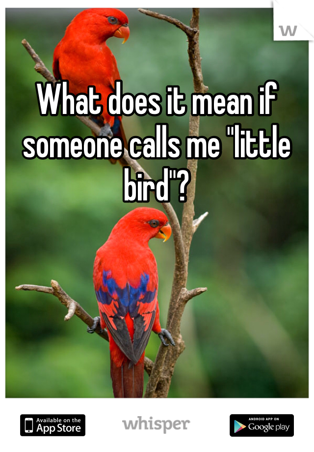 "What does it mean if someone calls me ""little bird""?"