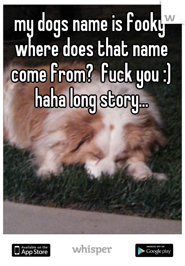 my dogs name is fooky where does that name come from?  fuck you :) haha long story...