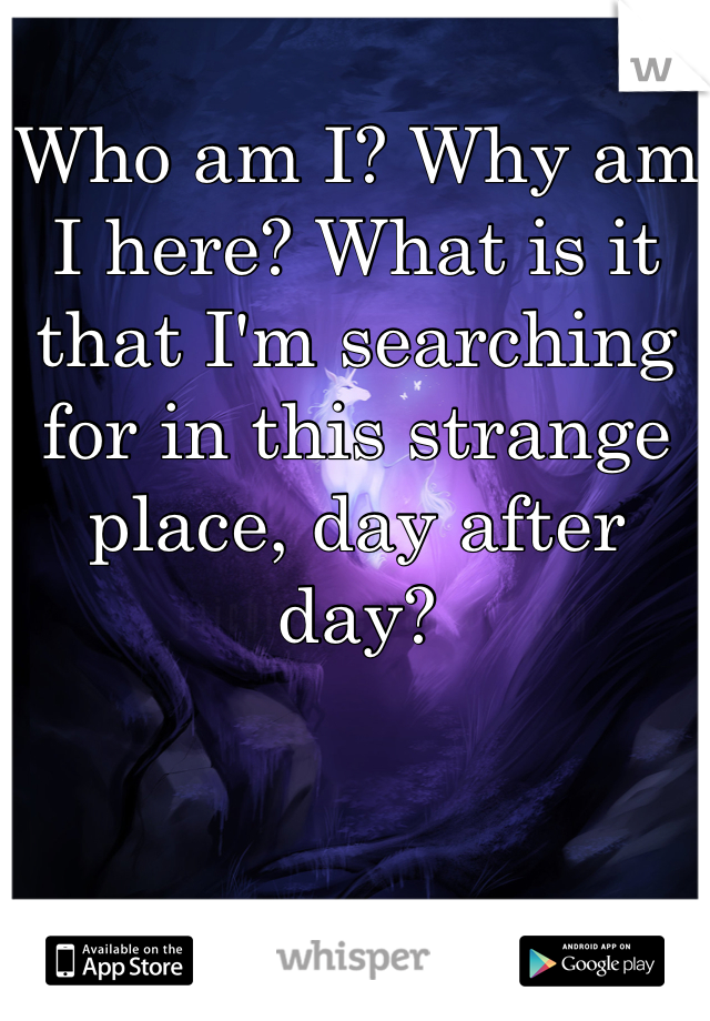 Who am I? Why am I here? What is it that I'm searching for in this strange place, day after day?