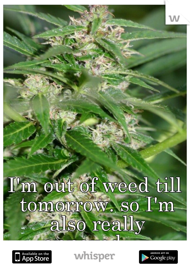 I'm out of weed till tomorrow. so I'm also really annoyed. -.-