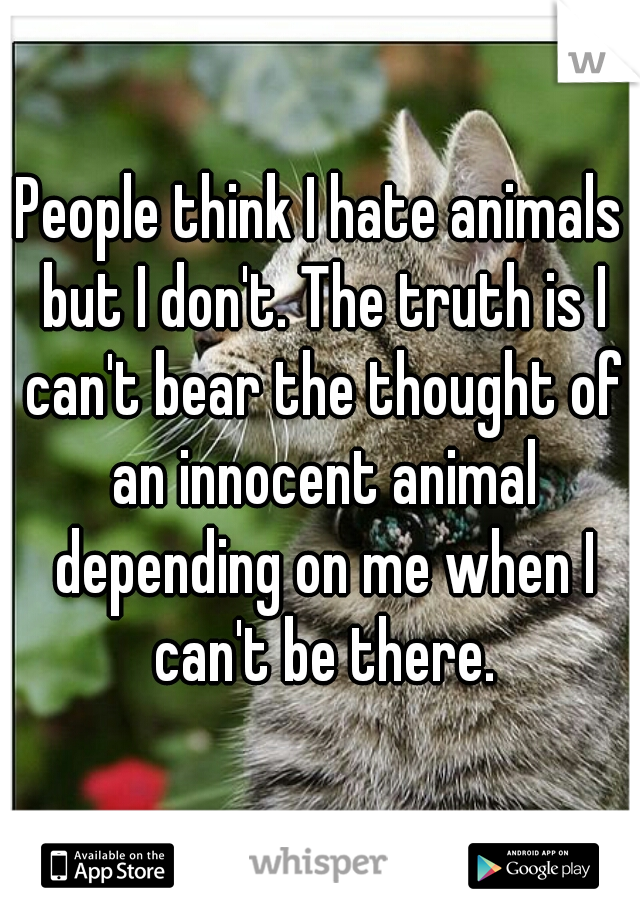 People think I hate animals but I don't. The truth is I can't bear the thought of an innocent animal depending on me when I can't be there.