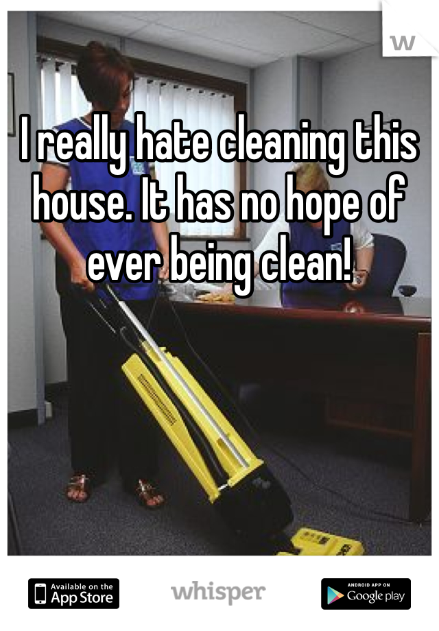 I really hate cleaning this house. It has no hope of ever being clean!