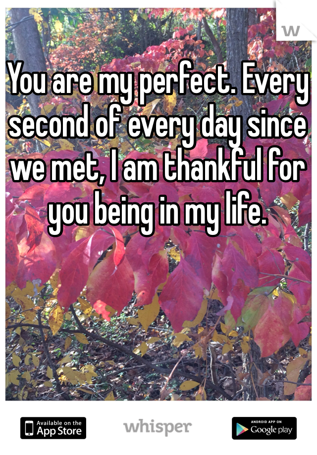 You are my perfect. Every second of every day since we met, I am thankful for you being in my life.