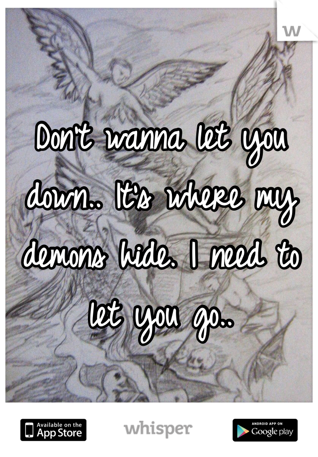 Don't wanna let you down.. It's where my demons hide. I need to let you go..