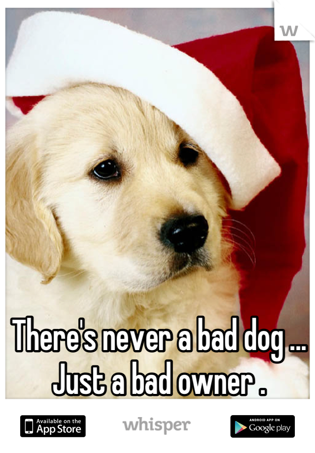 There's never a bad dog ... Just a bad owner .