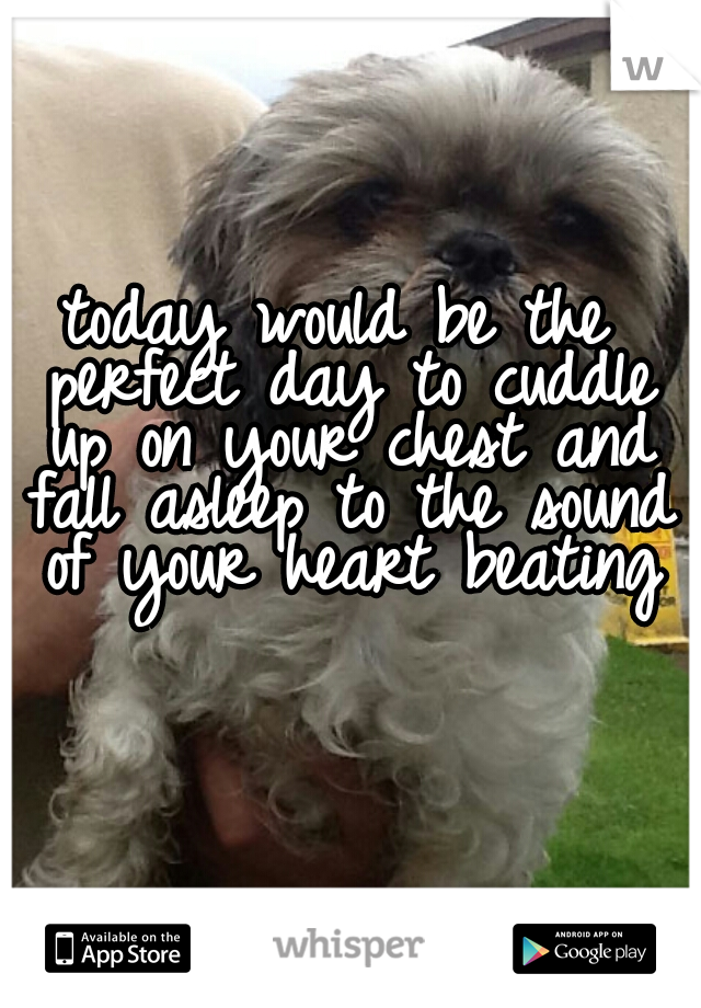 today would be the perfect day to cuddle up on your chest and fall asleep to the sound of your heart beating