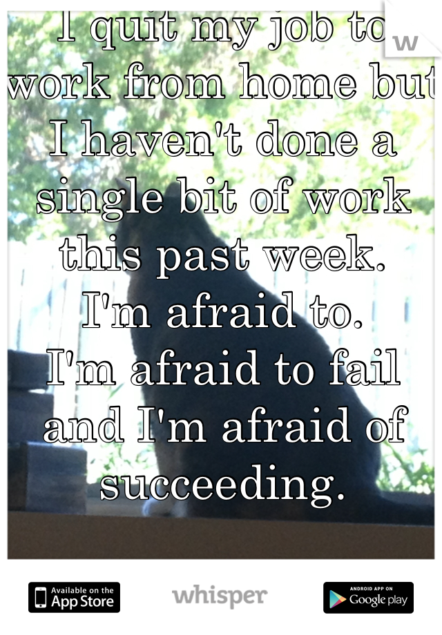 I quit my job to work from home but I haven't done a single bit of work this past week.  I'm afraid to.  I'm afraid to fail and I'm afraid of succeeding.   It's so messed up.