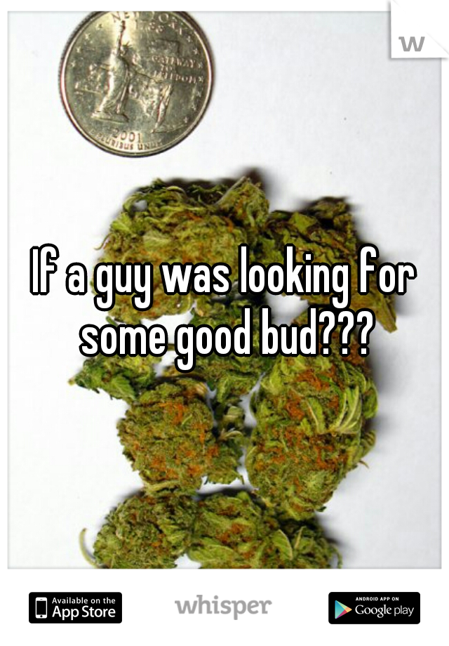 If a guy was looking for some good bud???