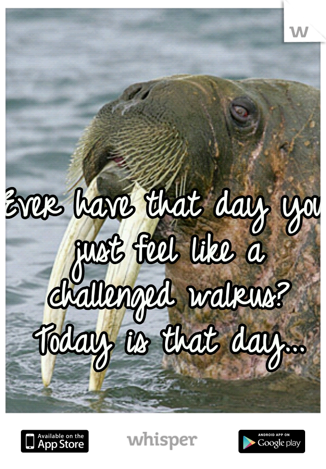 Ever have that day you just feel like a challenged walrus? Today is that day...