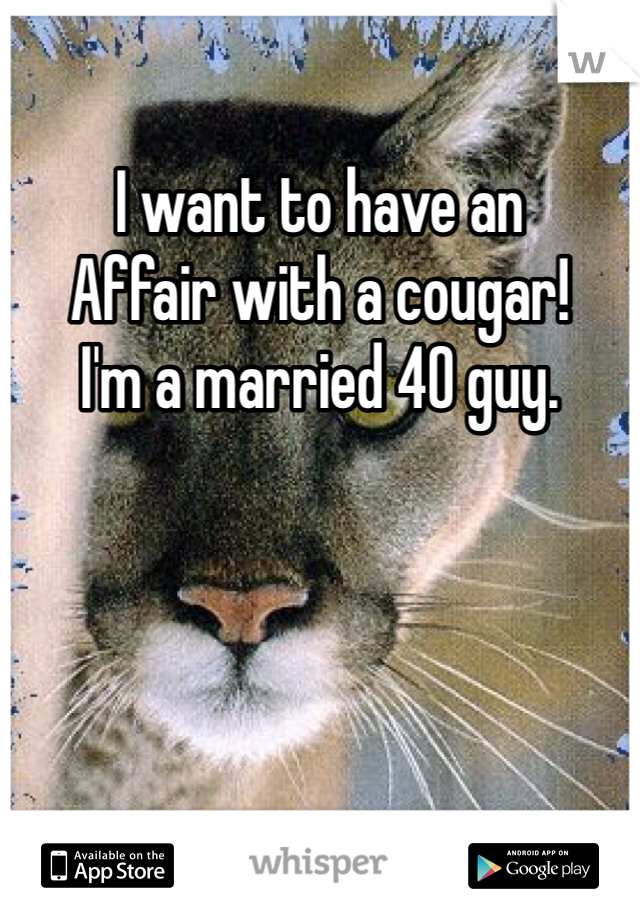 I want to have an Affair with a cougar! I'm a married 40 guy.