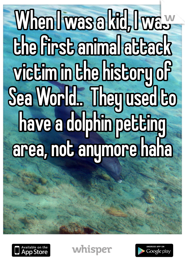 When I was a kid, I was the first animal attack victim in the history of Sea World..  They used to have a dolphin petting area, not anymore haha