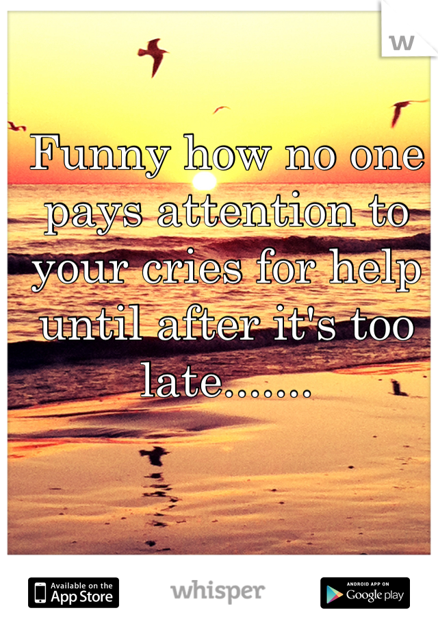 Funny how no one pays attention to your cries for help until after it's too late.......