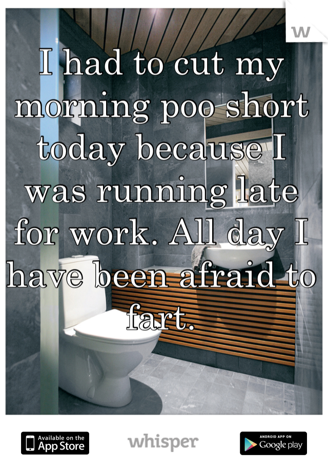 I had to cut my morning poo short today because I was running late for work. All day I have been afraid to fart.