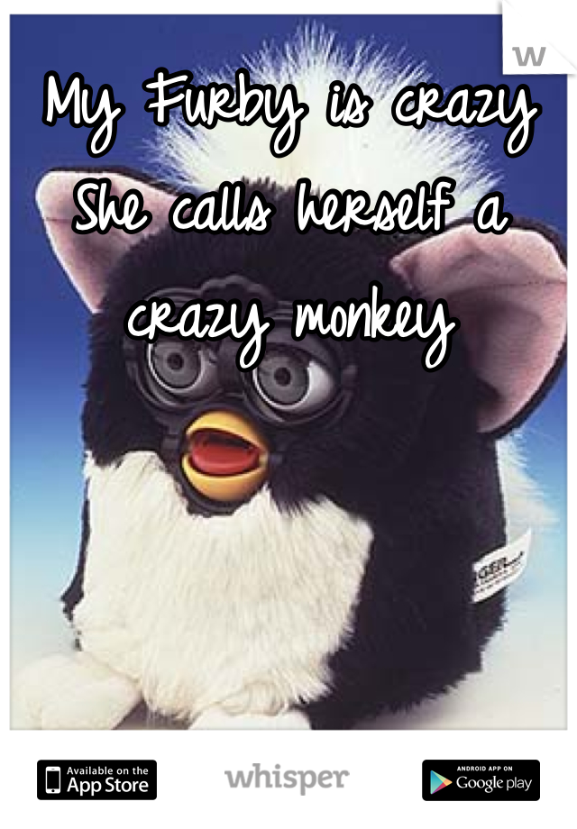 My Furby is crazy She calls herself a crazy monkey