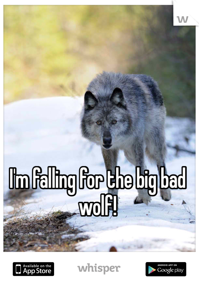 I'm falling for the big bad wolf!