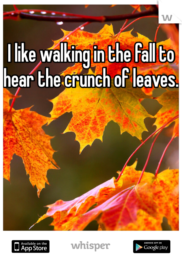 I like walking in the fall to hear the crunch of leaves.