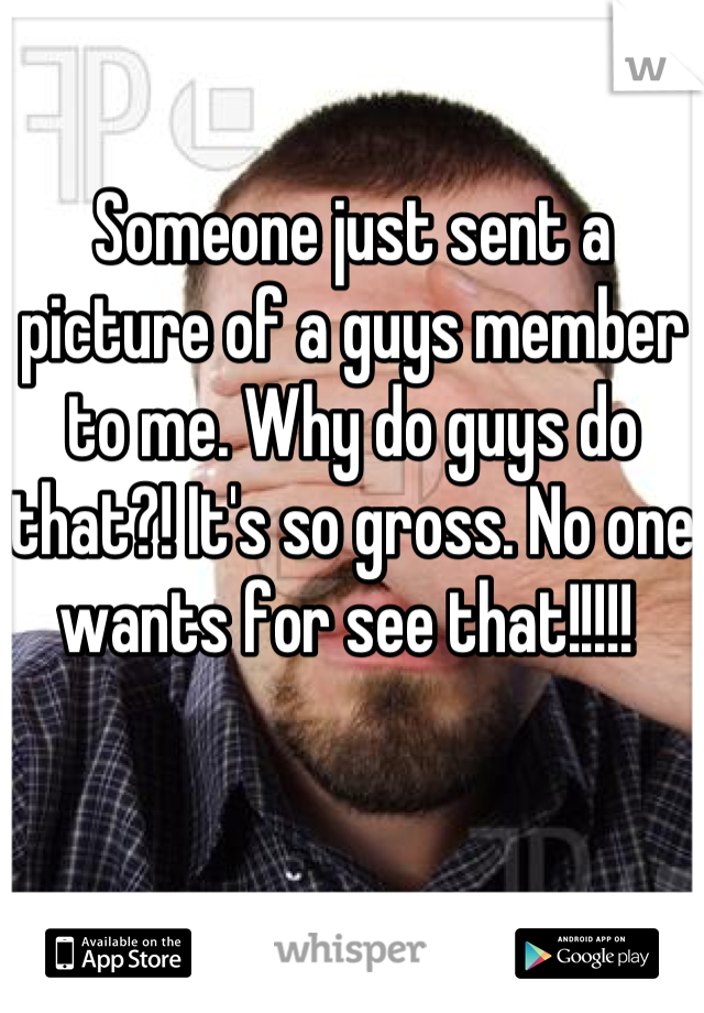 Someone just sent a picture of a guys member to me. Why do guys do that?! It's so gross. No one wants for see that!!!!!