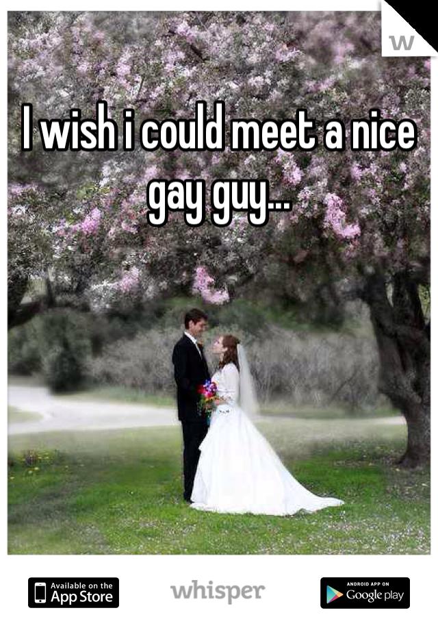 I wish i could meet a nice gay guy...
