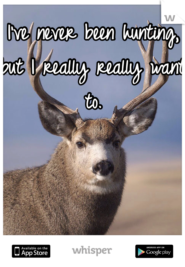 I've never been hunting, but I really really want to.