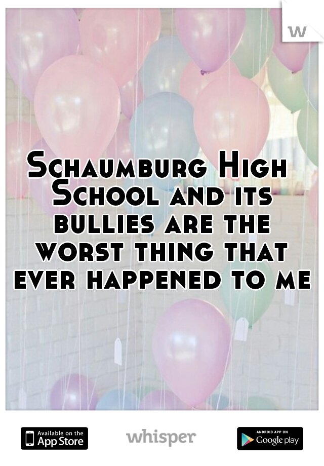 Schaumburg High School and its bullies are the worst thing that ever happened to me