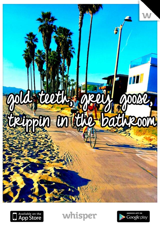 gold teeth, grey goose, trippin in the bathroom.