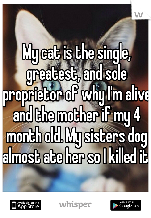 My cat is the single, greatest, and sole proprietor of why I'm alive and the mother if my 4 month old. My sisters dog almost ate her so I killed it.