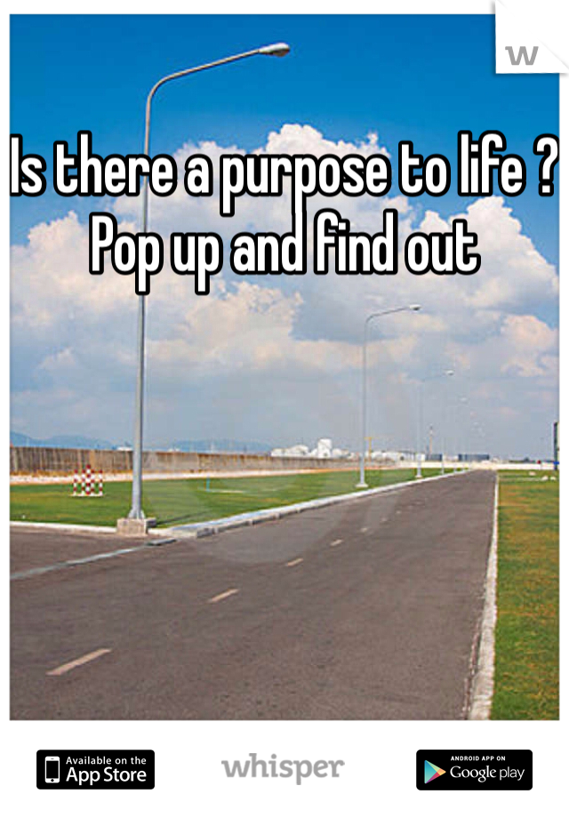 Is there a purpose to life ? Pop up and find out
