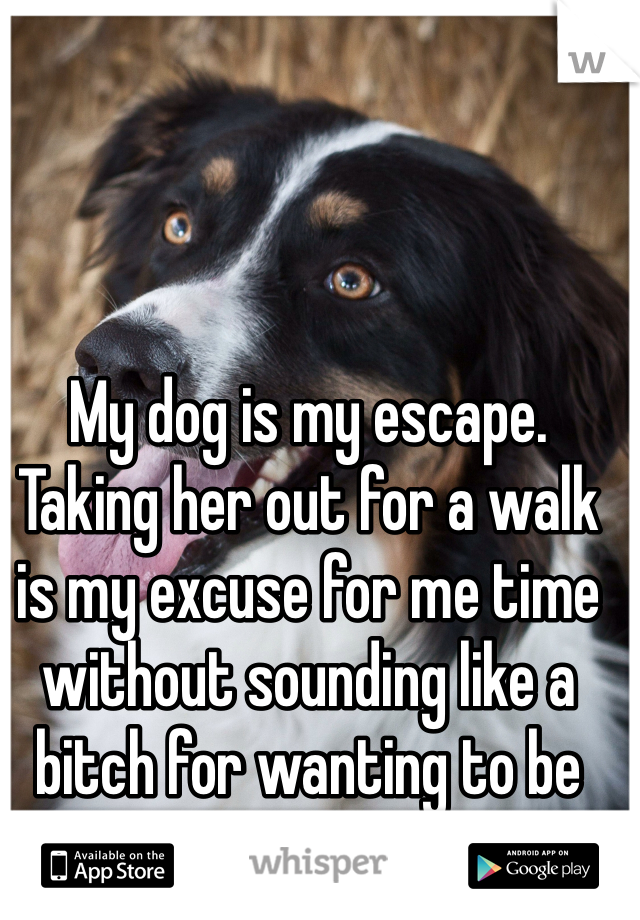 My dog is my escape. Taking her out for a walk is my excuse for me time without sounding like a bitch for wanting to be alone.