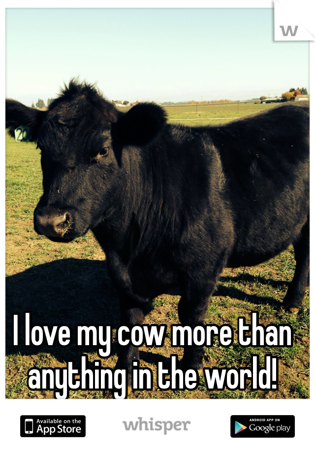 I love my cow more than anything in the world!