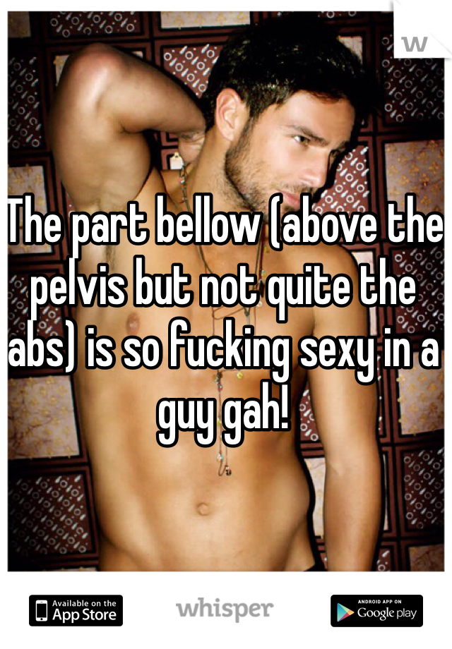 The part bellow (above the pelvis but not quite the abs) is so fucking sexy in a guy gah!