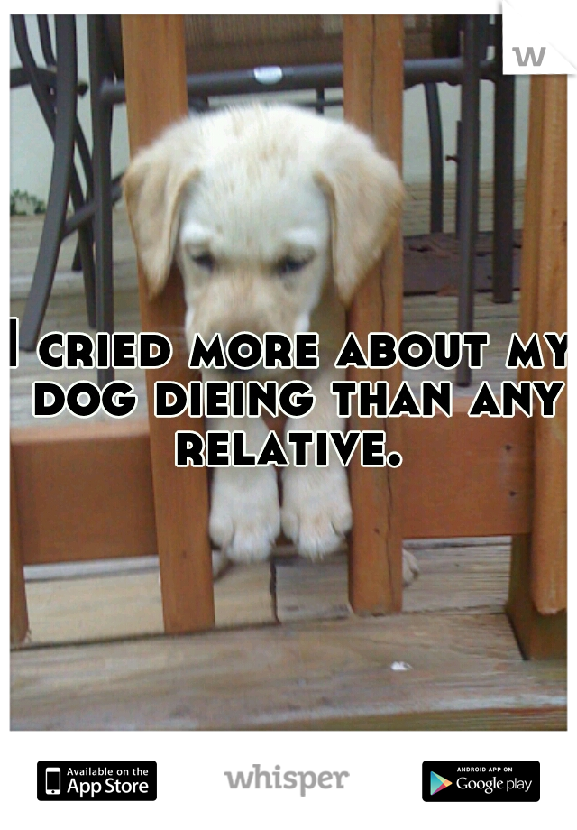 I cried more about my dog dieing than any relative.