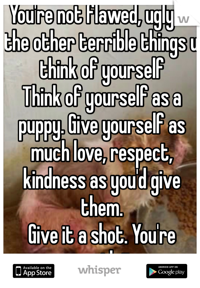 You're not flawed, ugly or the other terrible things u think of yourself Think of yourself as a puppy. Give yourself as much love, respect, kindness as you'd give them.  Give it a shot. You're worth it