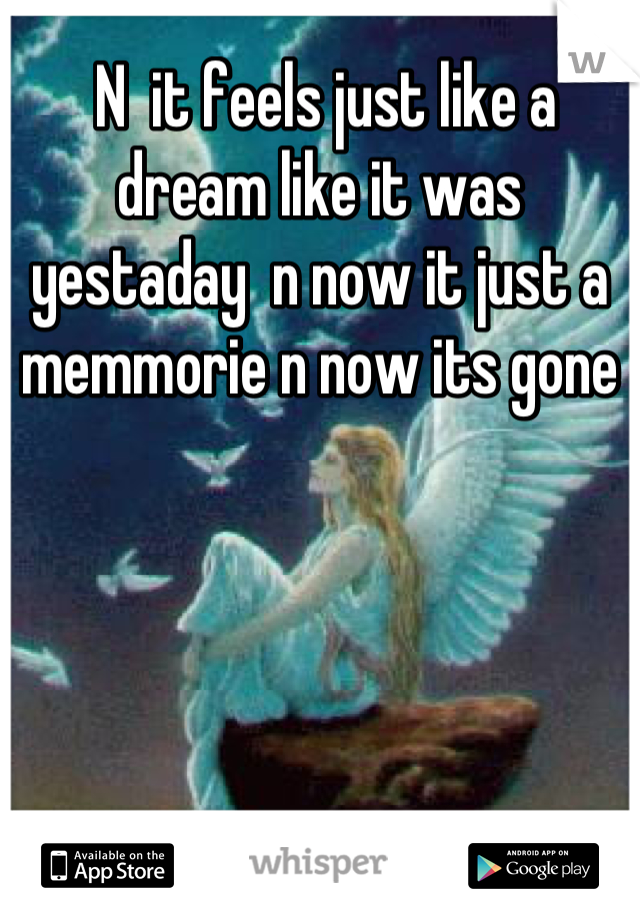 N  it feels just like a dream like it was yestaday  n now it just a memmorie n now its gone