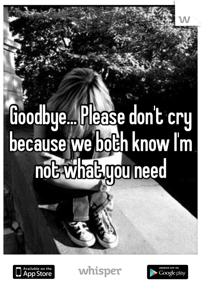 Goodbye... Please don't cry because we both know I'm not what you need