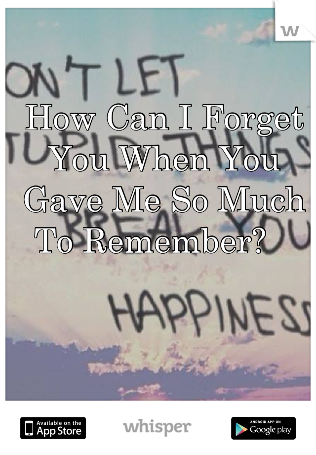 How Can I Forget You When You Gave Me So Much To Remember?