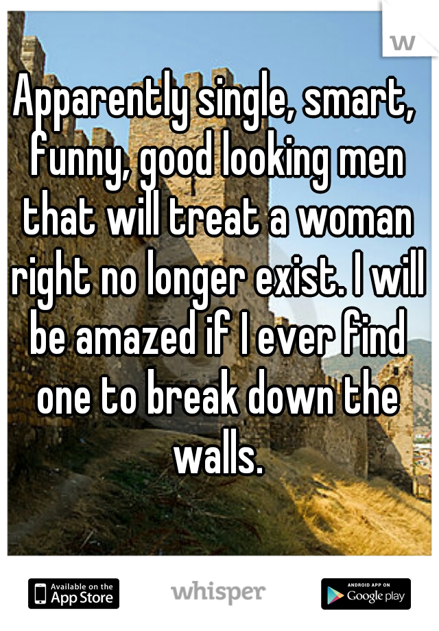 Apparently single, smart, funny, good looking men that will treat a woman right no longer exist. I will be amazed if I ever find one to break down the walls.