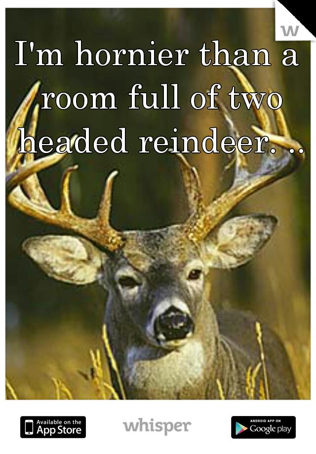 I'm hornier than a room full of two headed reindeer. ..