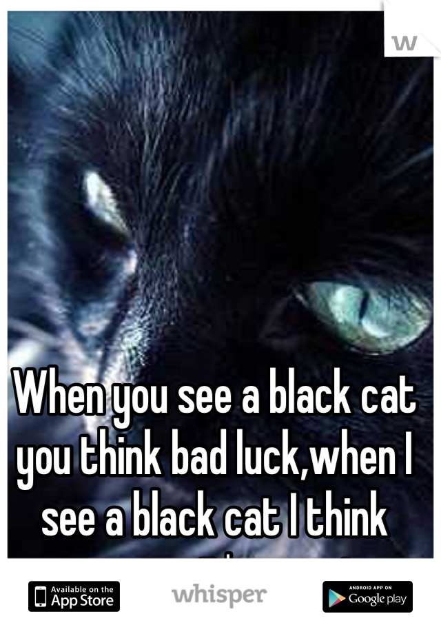 When you see a black cat you think bad luck,when I see a black cat I think awwww it's so cute.