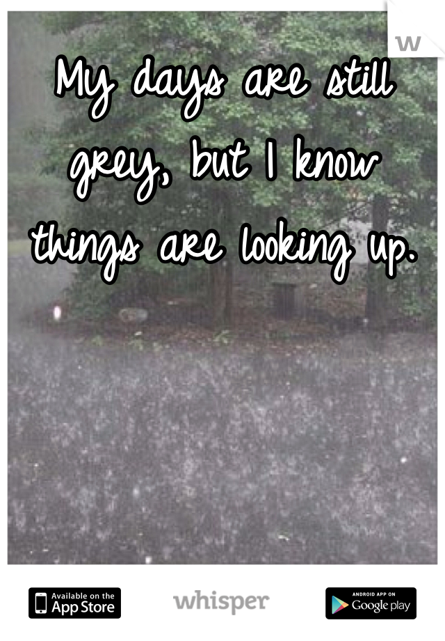 My days are still grey, but I know things are looking up.