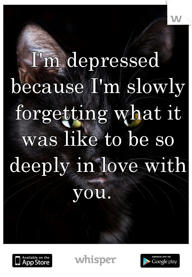 I'm depressed because I'm slowly forgetting what it was like to be so deeply in love with you.