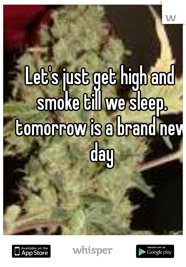 Let's just get high and smoke till we sleep. tomorrow is a brand new day