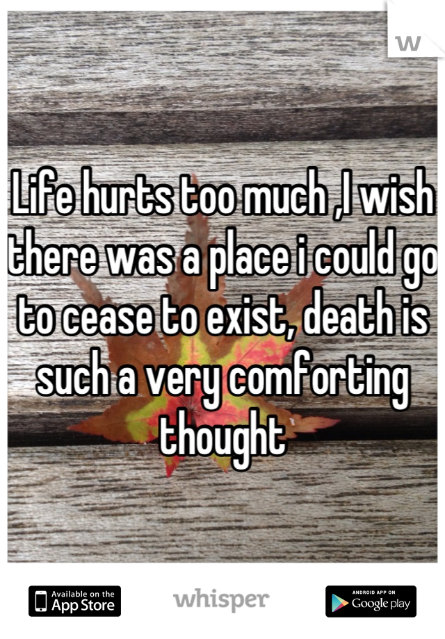 Life hurts too much ,I wish there was a place i could go to cease to exist, death is such a very comforting thought