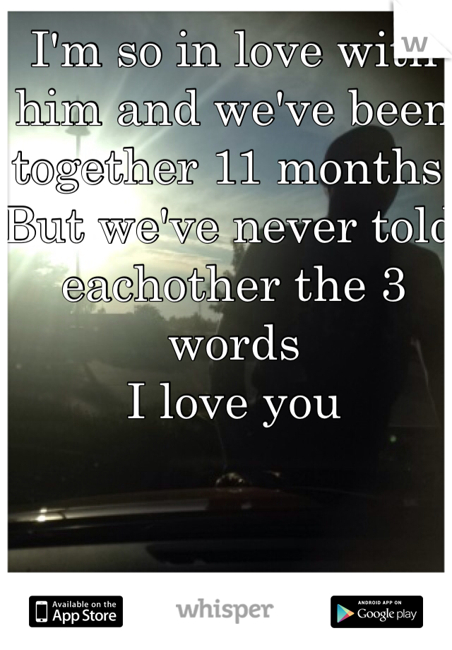 I'm so in love with him and we've been together 11 months, But we've never told eachother the 3 words I love you