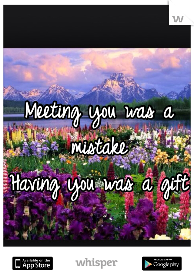 Meeting you was a mistake Having you was a gift