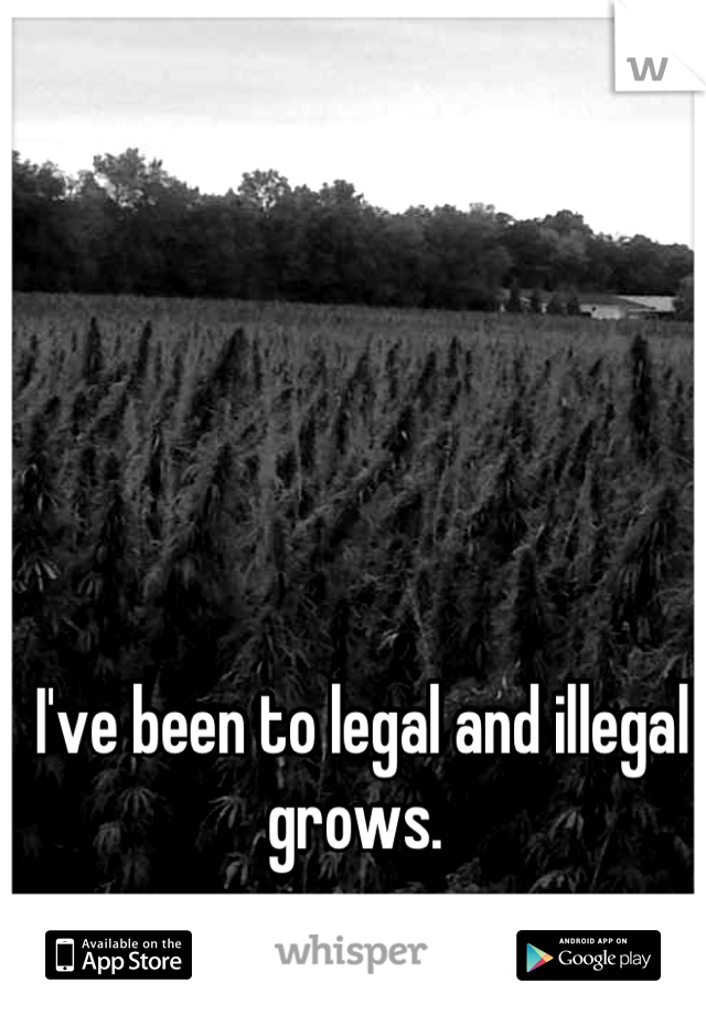I've been to legal and illegal grows.
