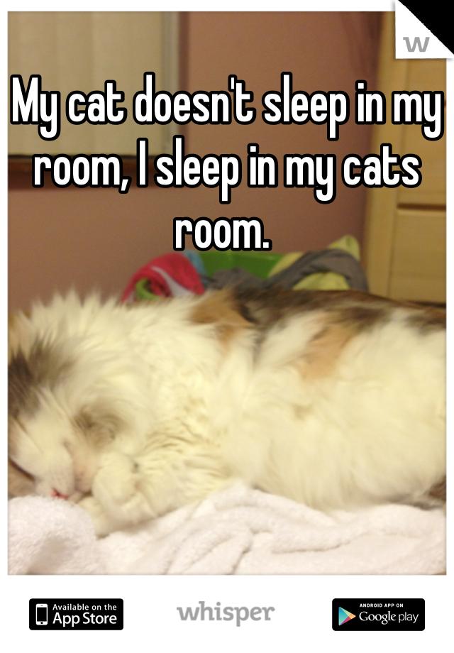 My cat doesn't sleep in my room, I sleep in my cats room.